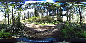 Nature JPG 360 35