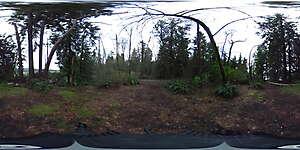 Nature JPG 360 3