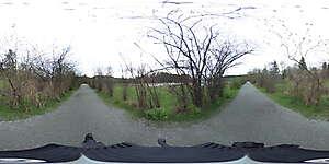 Nature 360