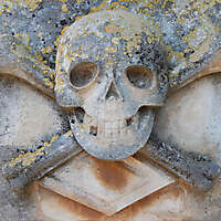 stone skull emblem 65