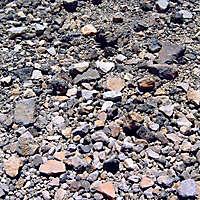 pebbly soil 8