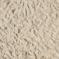 muddy sand wet