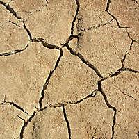 arid  soil 6
