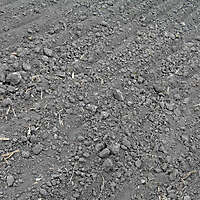 ploughed acre 9
