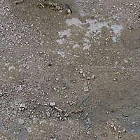 Very dirt ground floor 4
