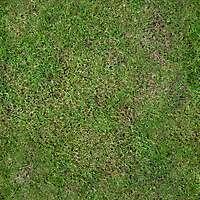 Grass clean