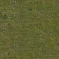 mixed grass 3