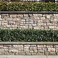 fence wall bricks