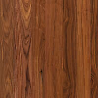Texture Wood Oak Wood New Lugher Texture Library
