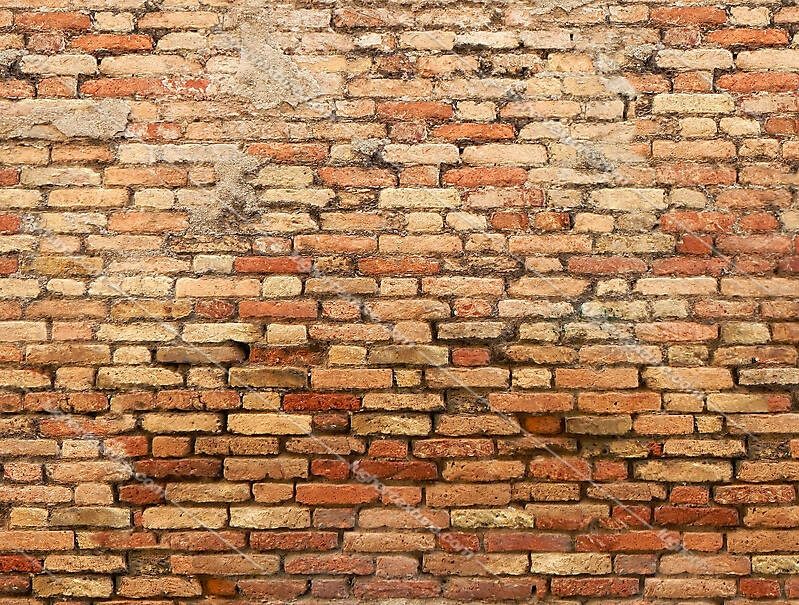 moldy bricks wall venice 25