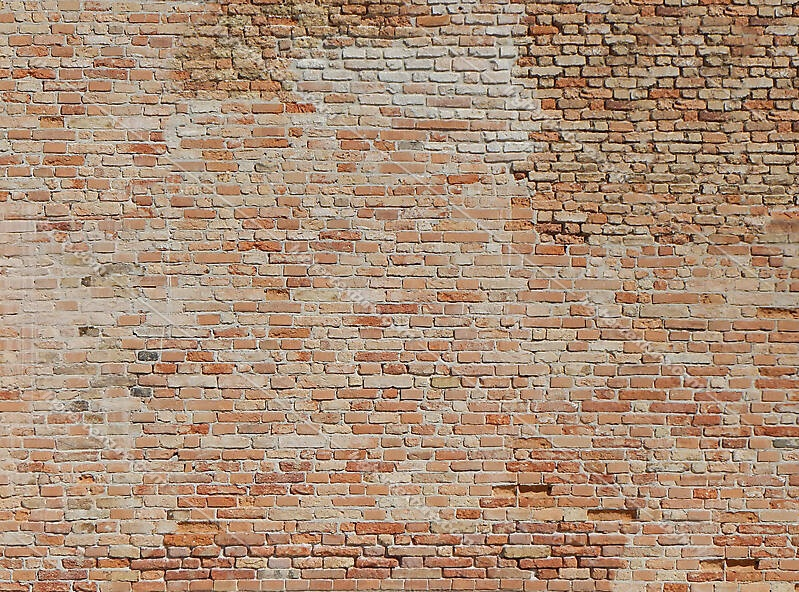 moldy bricks wall venice 30