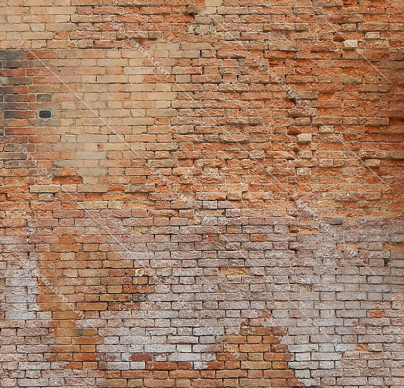 moldy bricks wall venice 12